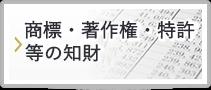 知財(商標・著作権・特許)